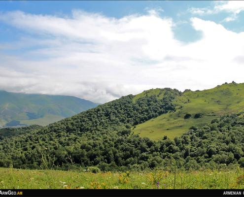 Թեժ լեռ