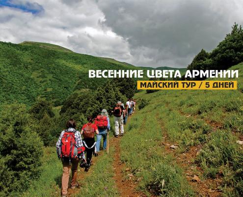 Весенние цвета Армении