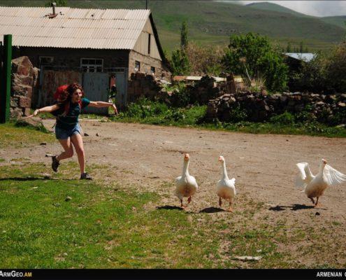 Դրախտիկ գյուղում