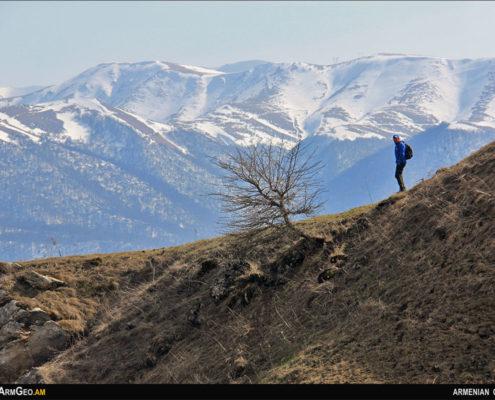 Իջևանի լեռներ