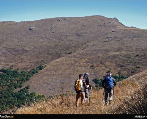 Նժույգ լեռ, Արջուտի թամքոց