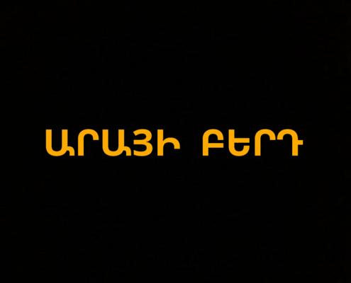 Արայի բերդ