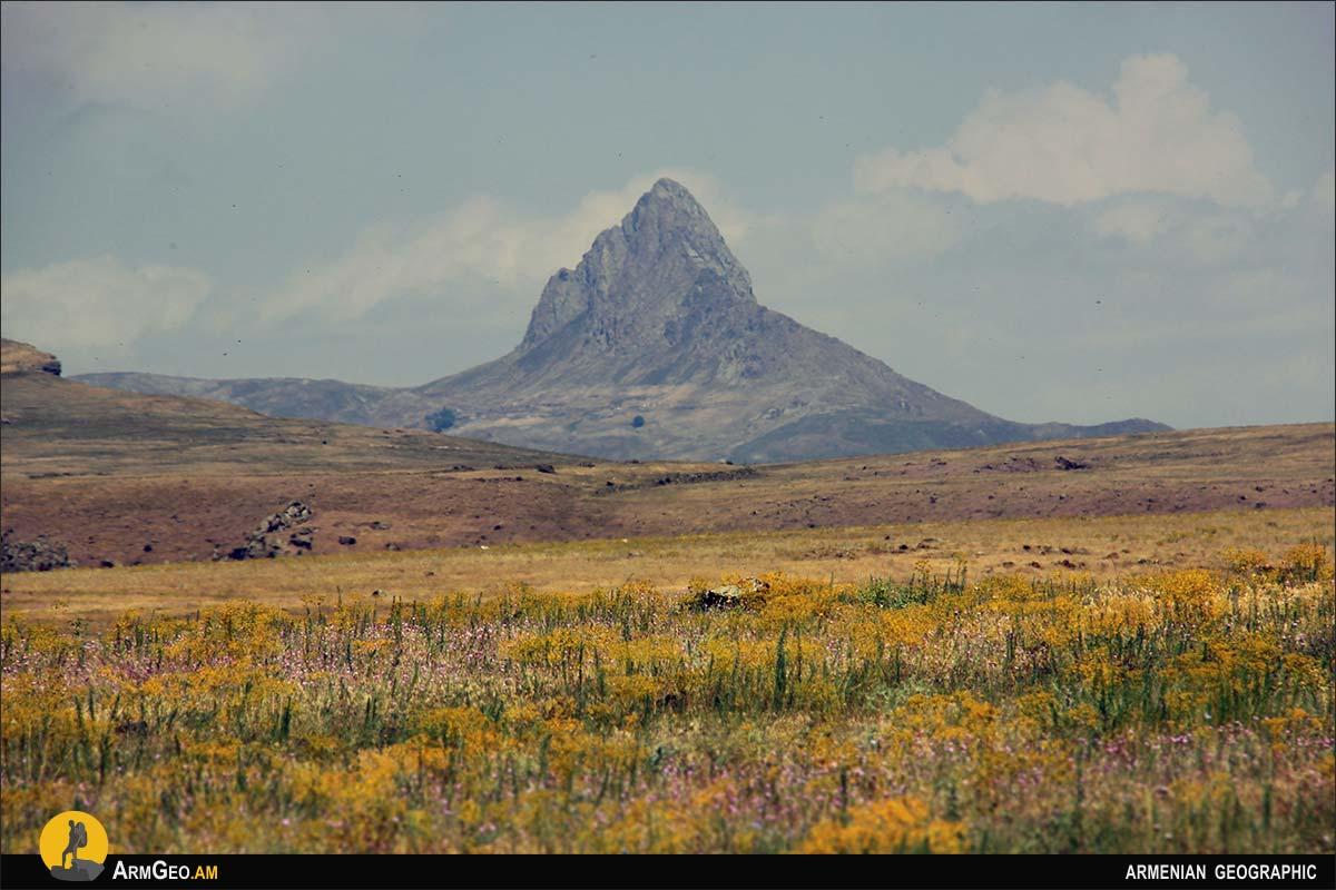 Гора Бардог